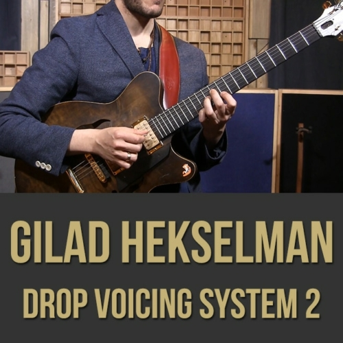 Gilad Hekselman (Drop Voicing System) - Videos 1 & 2 Bundle